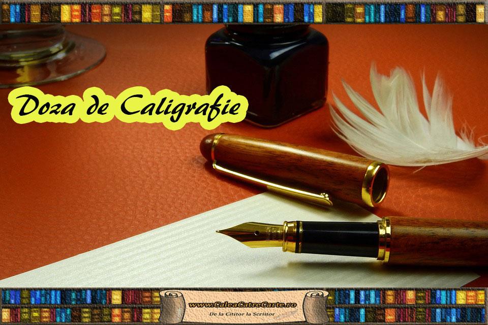 stilou pentru caligrafie
