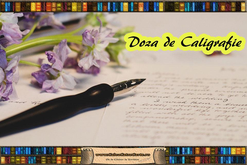 stiloul de caligrafie